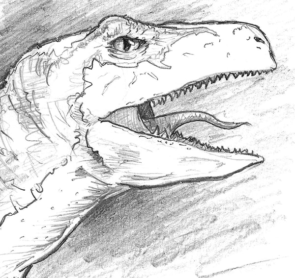 Fully rendered artwork: how to draw a velociraptor (dinosaur) by Nate Lindley.