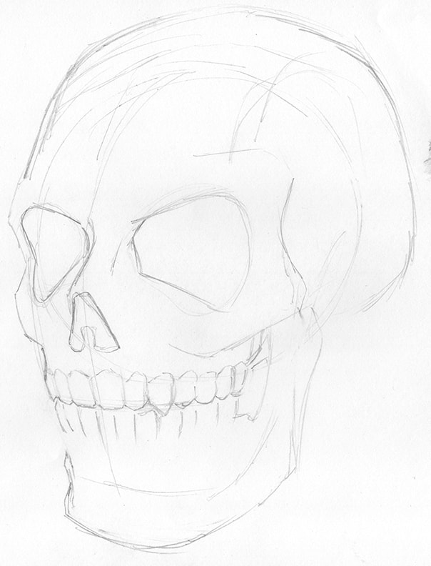 Line Drawing of complex shapes: how to draw a human skull by Nate Lindley.