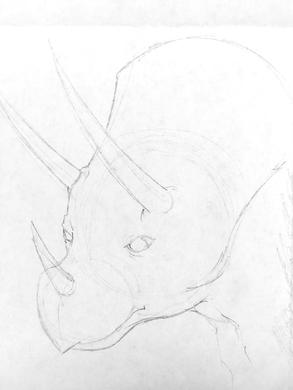 Line drawing of the complex shapes: how to draw a triceratops (dinosaur) by Nate Lindley.